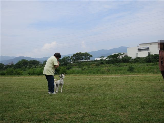 f:id:yasukazu01:20120603101309j:image