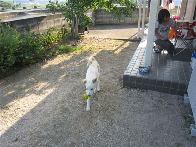 f:id:yasukazu01:20120603170758j:image