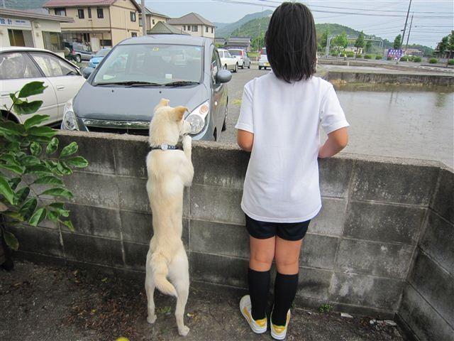f:id:yasukazu01:20120604170140j:image