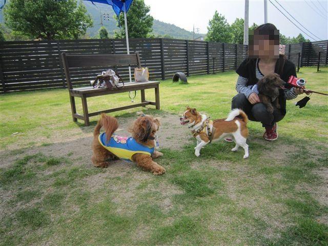 f:id:yasukazu01:20120606151411j:image