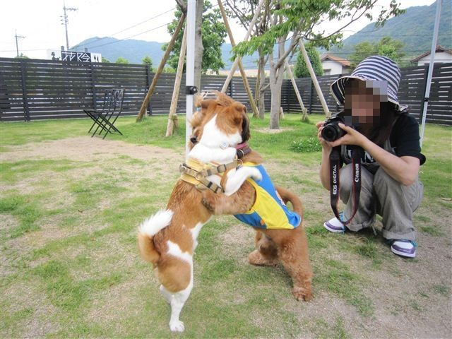 f:id:yasukazu01:20120606153337j:image