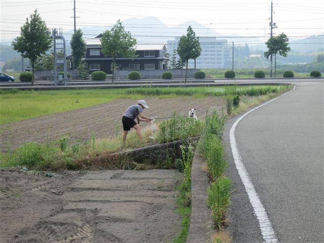f:id:yasukazu01:20120607165810j:image