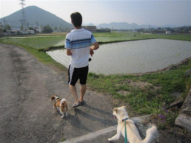 f:id:yasukazu01:20120607171526j:image