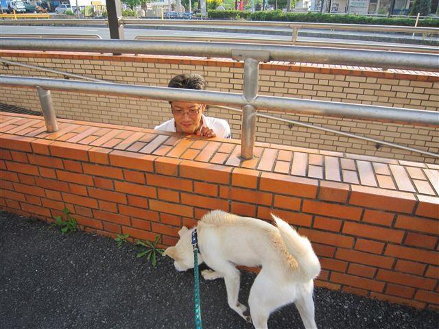 f:id:yasukazu01:20120607171823j:image