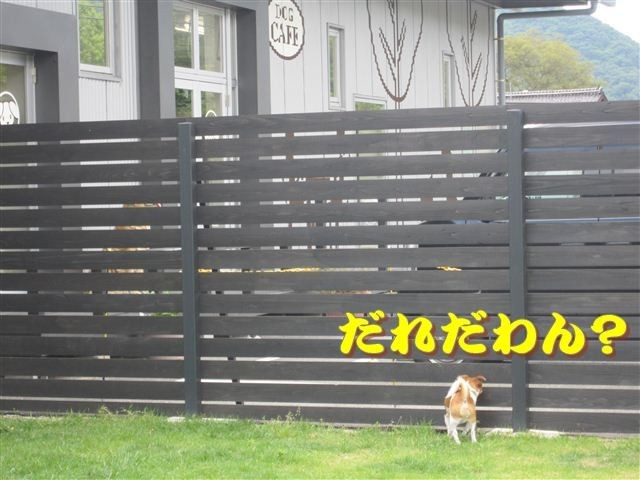 f:id:yasukazu01:20120610095207j:image