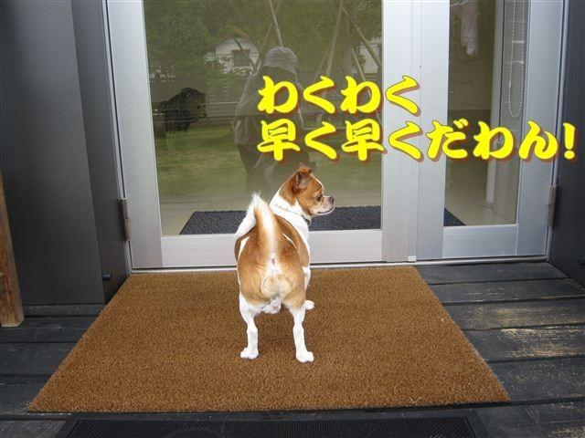 f:id:yasukazu01:20120610095332j:image