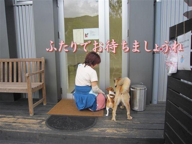 f:id:yasukazu01:20120610100409j:image