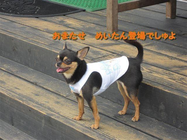 f:id:yasukazu01:20120610100817j:image
