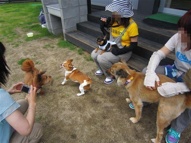 f:id:yasukazu01:20120610101101j:image