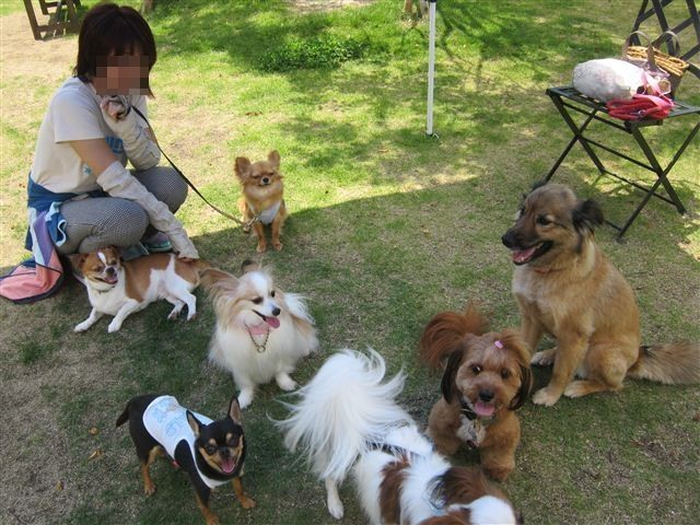 f:id:yasukazu01:20120610110657j:image