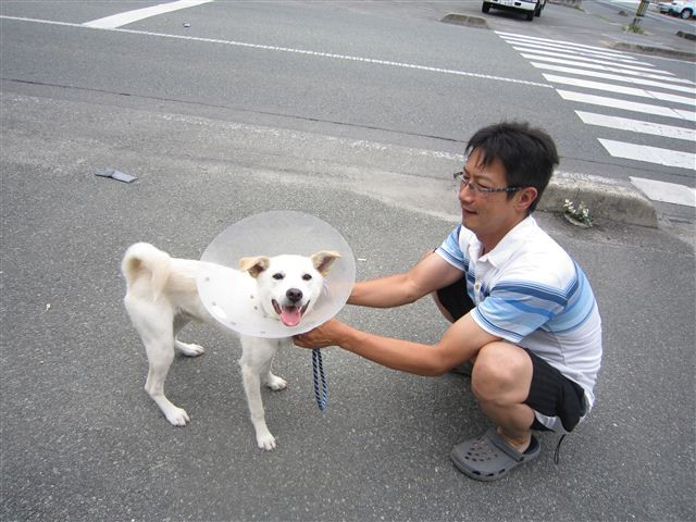 f:id:yasukazu01:20120611170405j:image