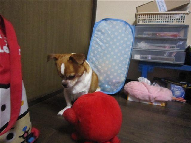f:id:yasukazu01:20120618224543j:image