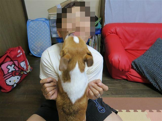 f:id:yasukazu01:20120619185116j:image