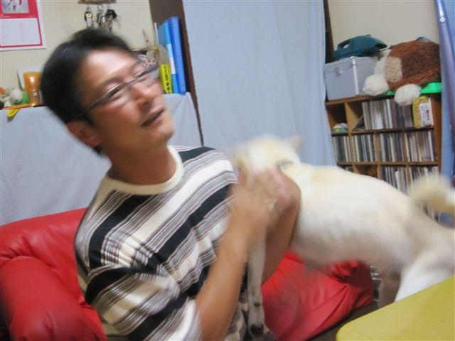 f:id:yasukazu01:20120621231623j:image