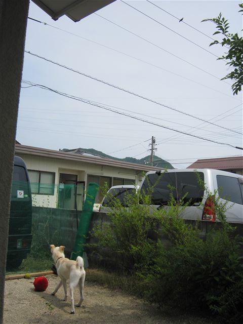 f:id:yasukazu01:20120623142136j:image