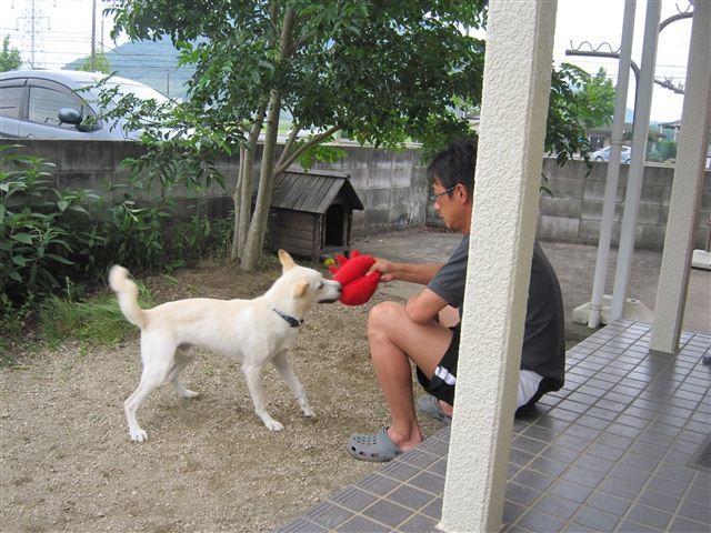 f:id:yasukazu01:20120626153802j:image