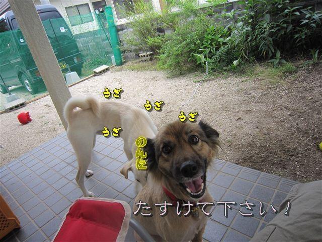 f:id:yasukazu01:20120707161046j:image