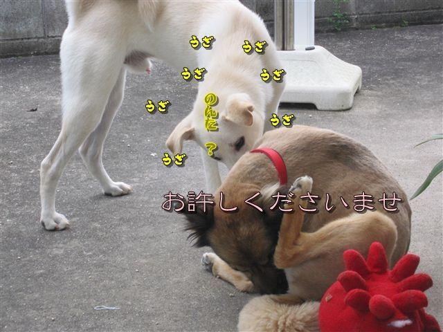 f:id:yasukazu01:20120707161304j:image
