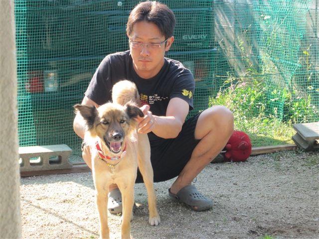 f:id:yasukazu01:20120708080559j:image