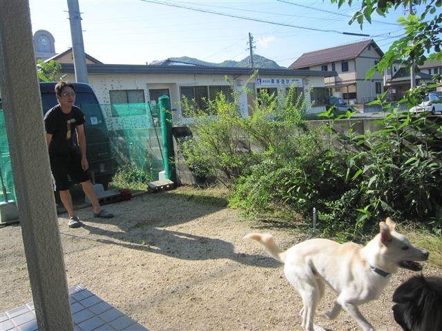 f:id:yasukazu01:20120708080633j:image