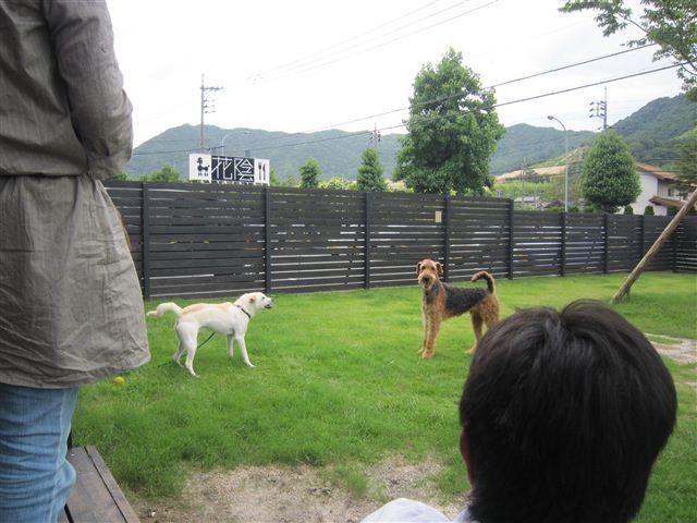 f:id:yasukazu01:20120708103355j:image