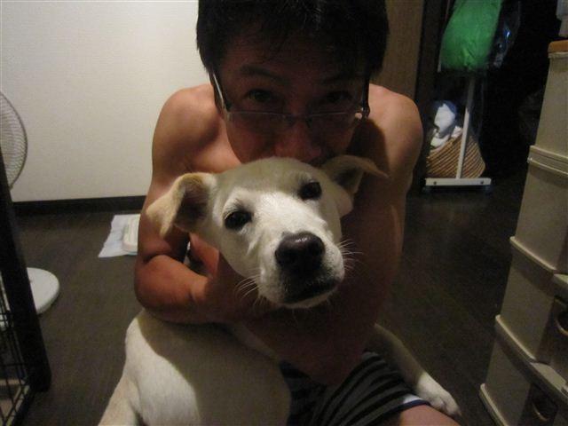 f:id:yasukazu01:20120715221839j:image