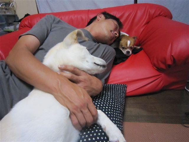 f:id:yasukazu01:20120716181455j:image