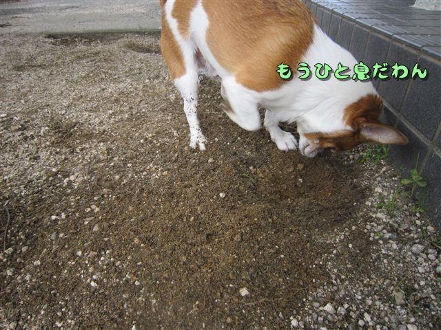 f:id:yasukazu01:20120719123141j:image