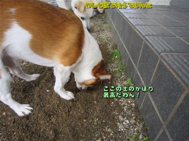 f:id:yasukazu01:20120719123214j:image