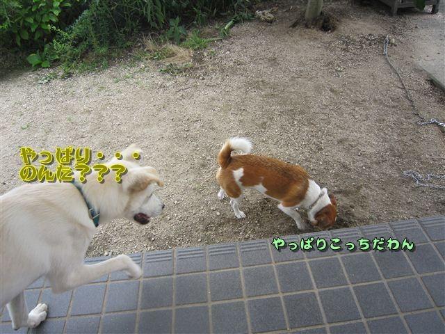 f:id:yasukazu01:20120719152911j:image