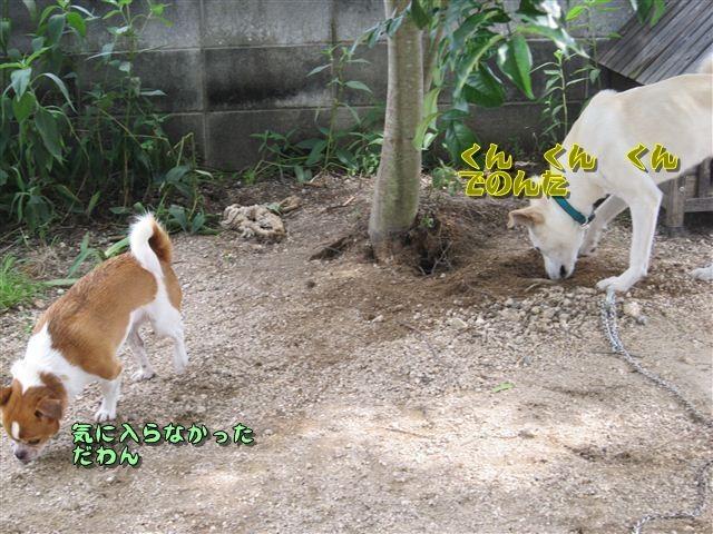 f:id:yasukazu01:20120719153814j:image
