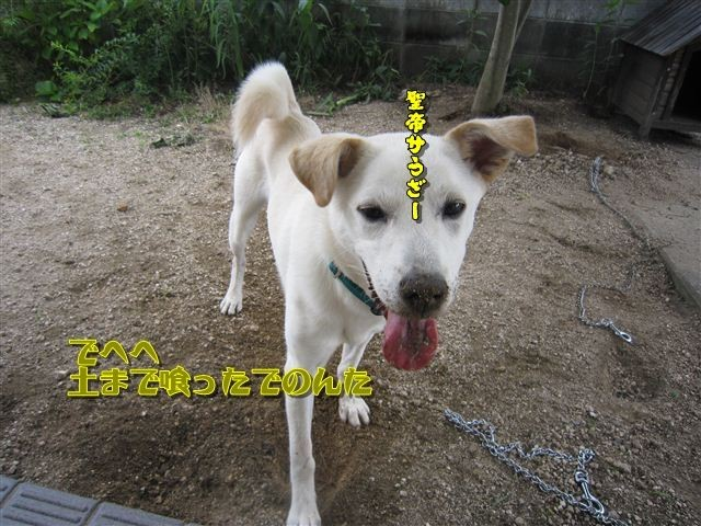 f:id:yasukazu01:20120719154048j:image