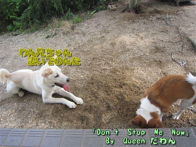 f:id:yasukazu01:20120719154620j:image
