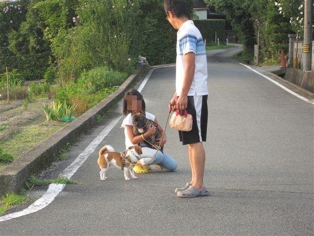 f:id:yasukazu01:20120723182405j:image