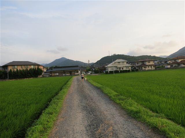 f:id:yasukazu01:20120723182709j:image
