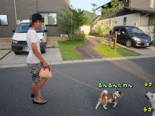 f:id:yasukazu01:20120724182845j:image