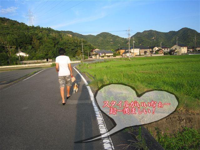f:id:yasukazu01:20120724182930j:image