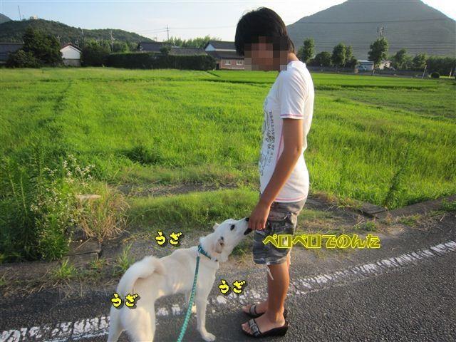 f:id:yasukazu01:20120724182954j:image