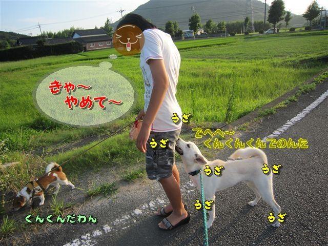 f:id:yasukazu01:20120724182959j:image