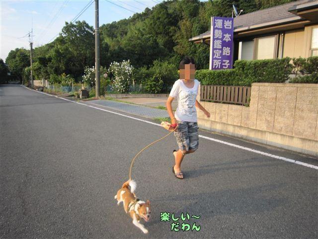 f:id:yasukazu01:20120724183220j:image