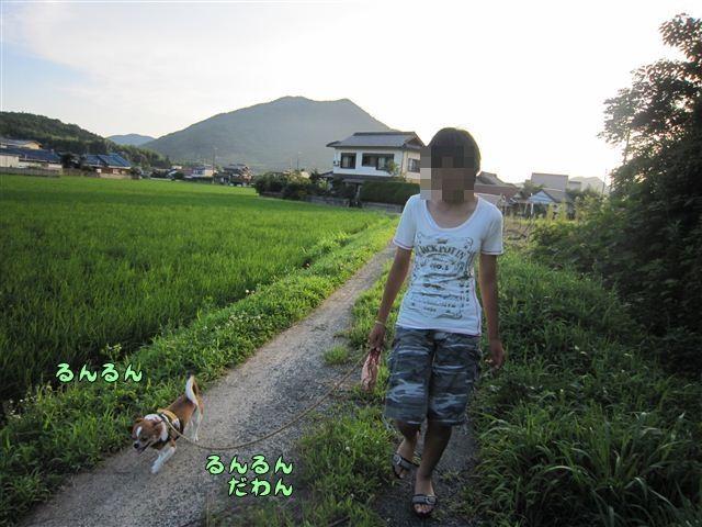 f:id:yasukazu01:20120724183613j:image