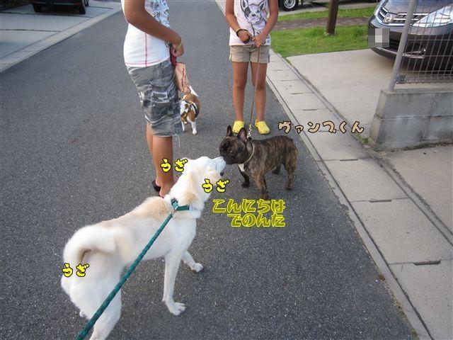 f:id:yasukazu01:20120724184951j:image