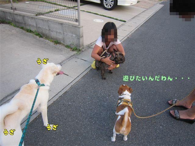f:id:yasukazu01:20120724185048j:image