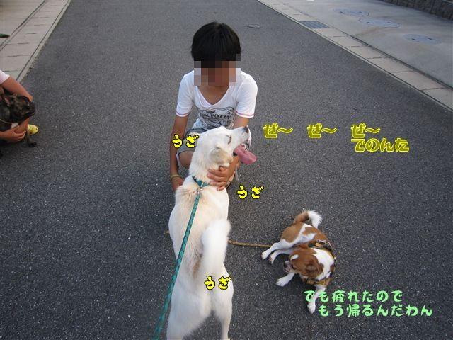 f:id:yasukazu01:20120724185106j:image