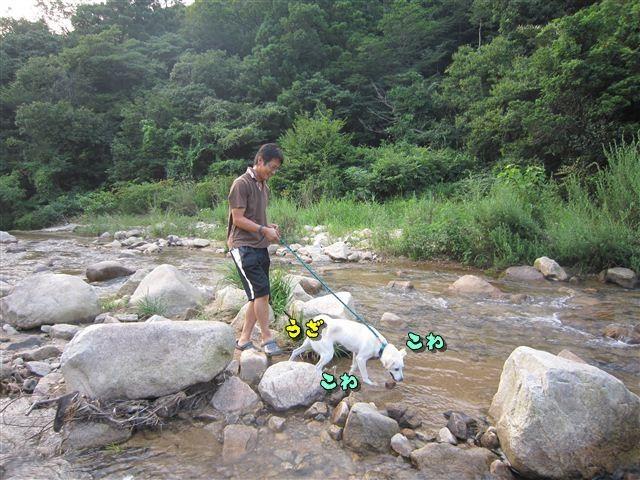f:id:yasukazu01:20120727181752j:image