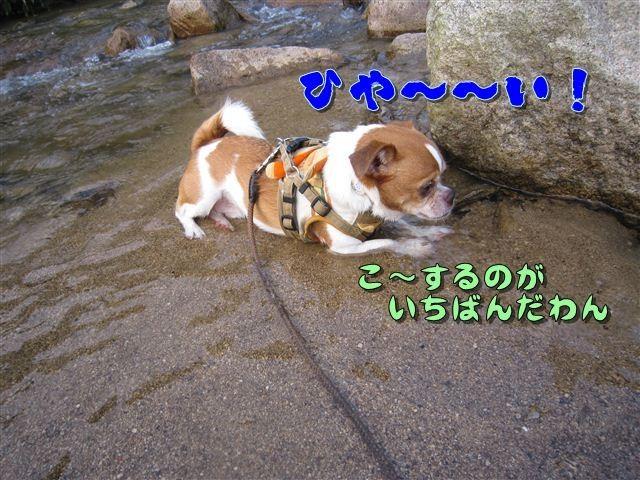 f:id:yasukazu01:20120727182008j:image