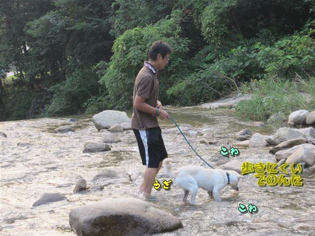 f:id:yasukazu01:20120727182025j:image