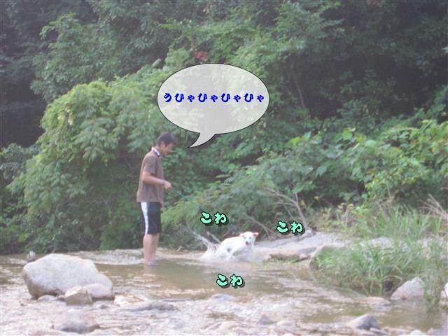 f:id:yasukazu01:20120727182120j:image