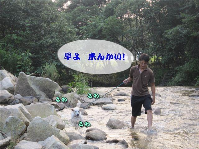f:id:yasukazu01:20120727182145j:image
