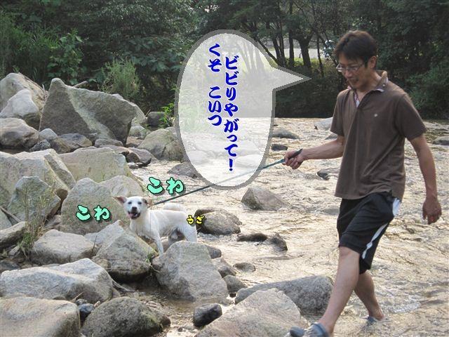 f:id:yasukazu01:20120727182154j:image